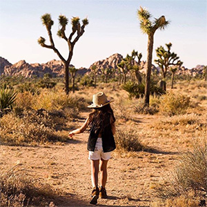 Joshua Tree Events Perfect for Fall